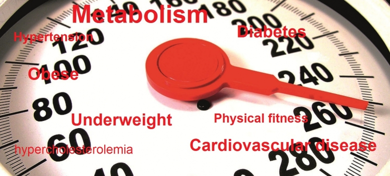 Metabolic weighing scales_3